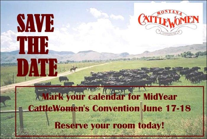 2016_midyear_meeting