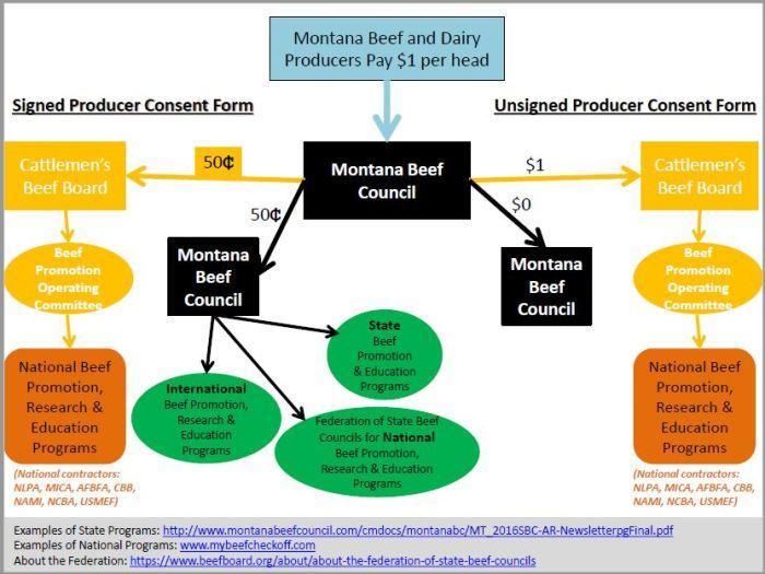 montana beef flow chart